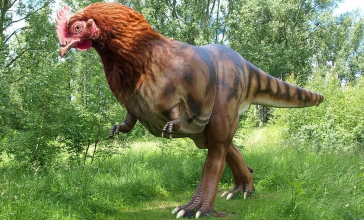 A dinosaur with a chickens head.