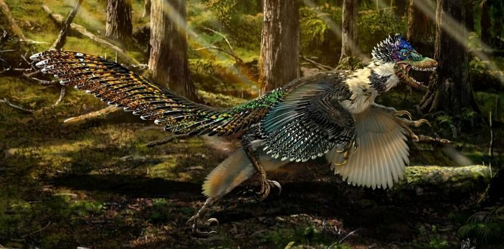 Velociraptors were great at hunting.