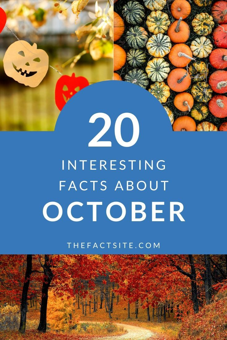 20 Interesting Facts About October