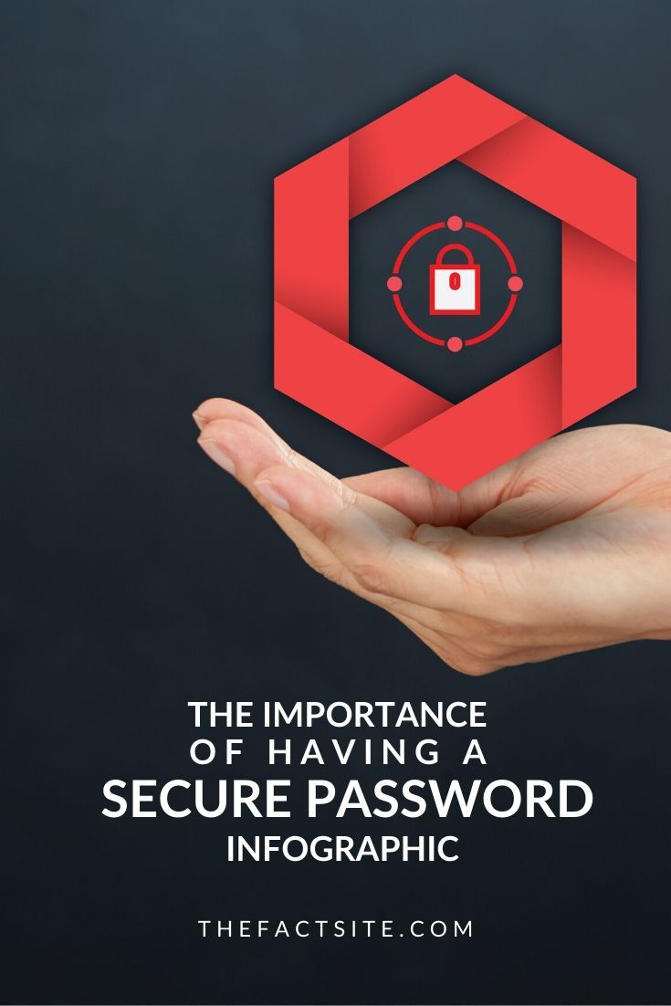 The Importance Of Having A Secure Password InfoGraphic
