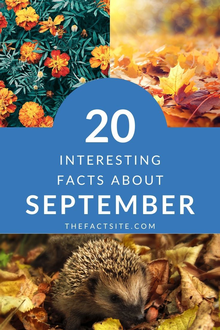 20 Interesting Facts About September