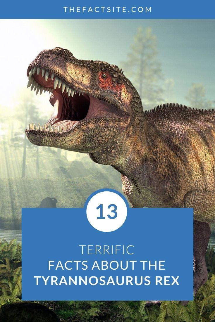 13 Terrific Facts About The Tyrannosaurus Rex