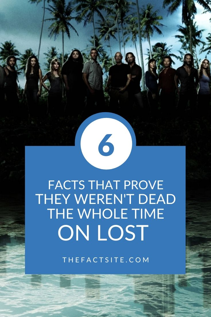 6 Facts That Prove They Weren't Dead The Whole Time On LOST