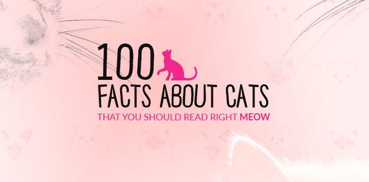 100 Cat Facts