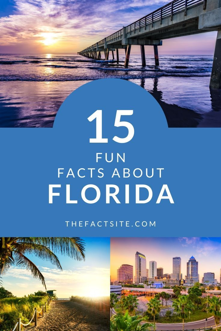 15 Fun Facts About Florida