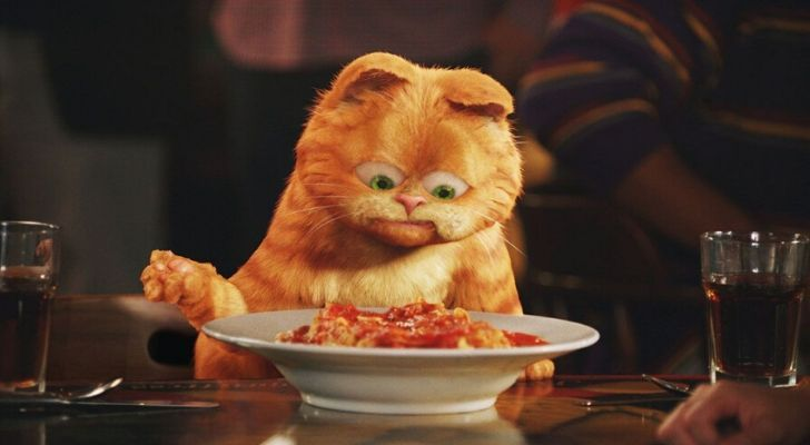 Garfield the cat staring at a bowl of lasagne