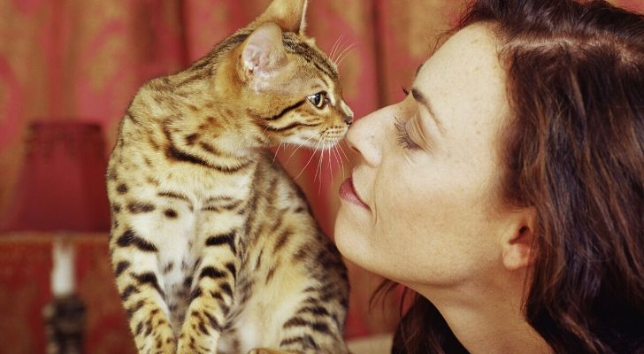 A cat and a woman staring at eachother with their noses touching