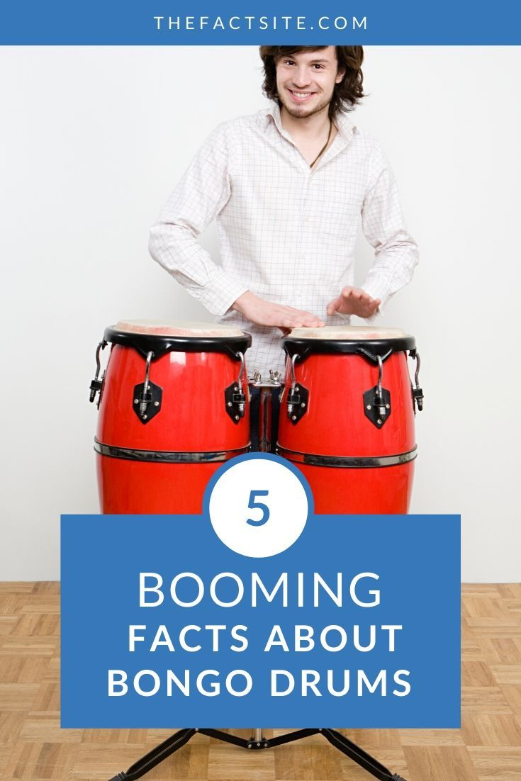 5 Booming Facts About Bongo Drums