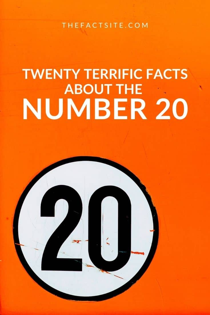 Twenty Terrific Facts About The Number 20