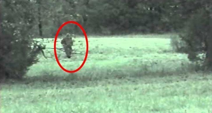 Alleged sighting of the Fauke Monster of Arkansas