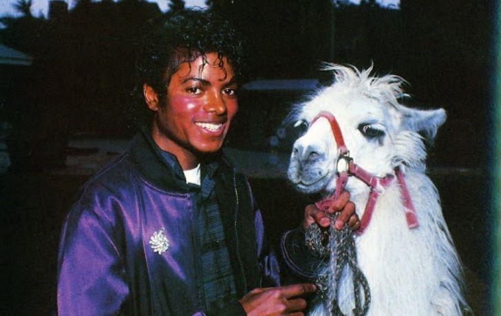 Michael Jackson with a llama