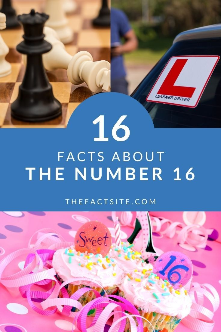 16 Facts About The Number 16