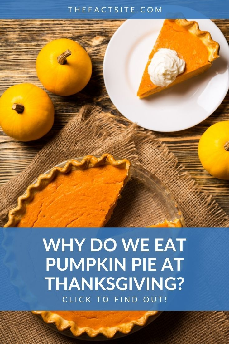 Why Do We Eat Pumpkin Pie At Thanksgiving?