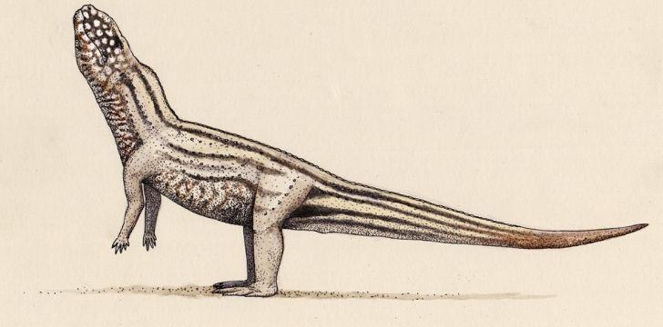 A vivaron illustration that looks like a dinosaur snake