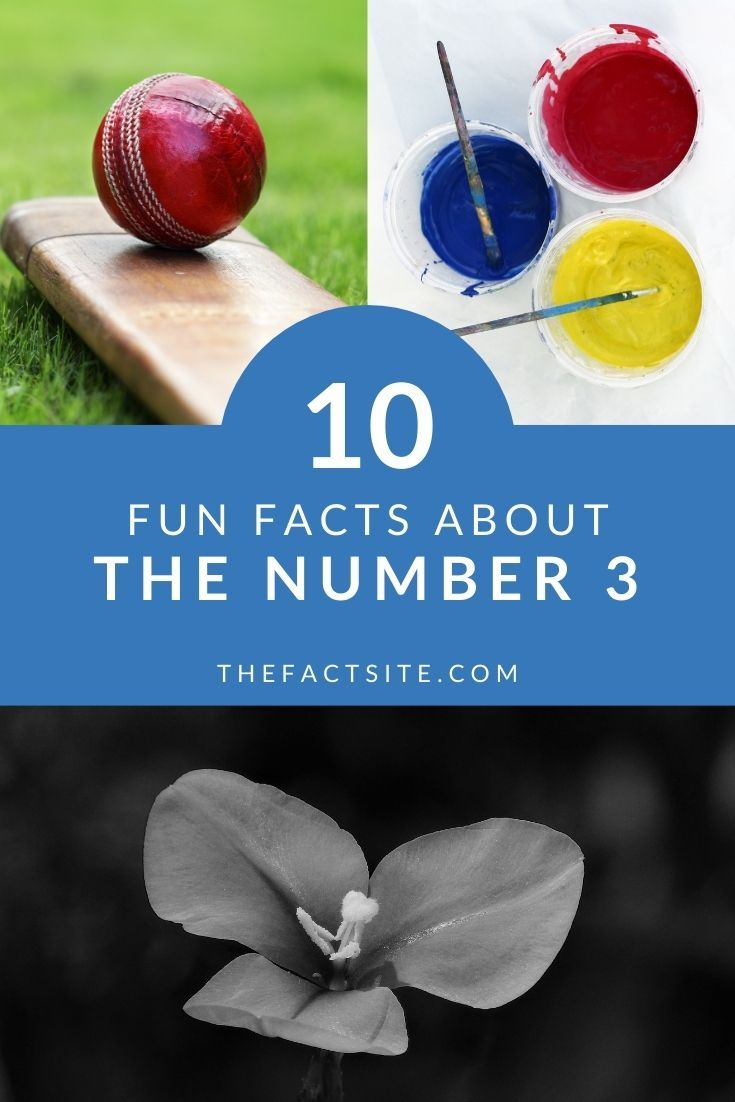 10 Fun Facts About The Number 3