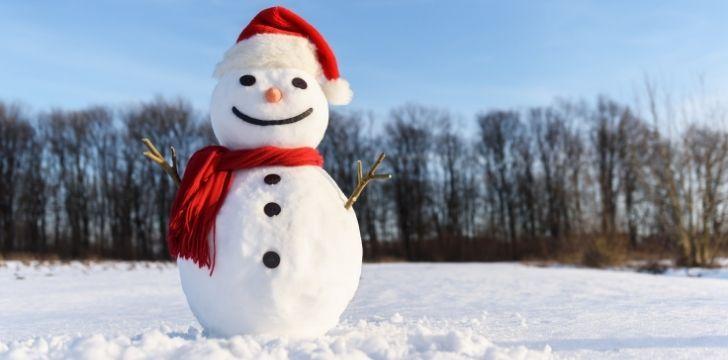 A proud happy snowman
