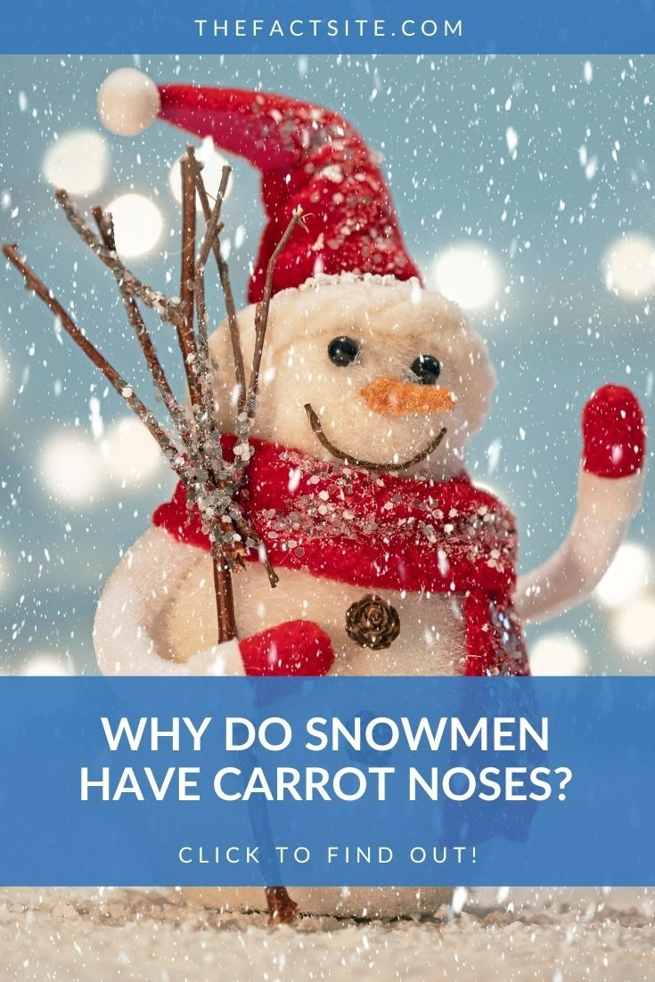 Why Do Snowmen Have Carrot Noses?