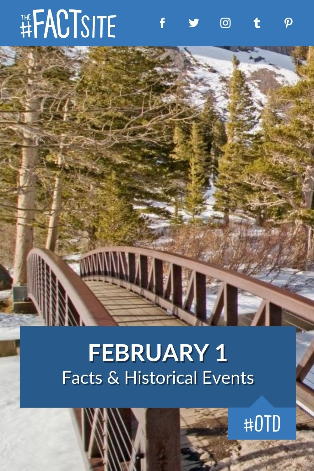 Facts & Historic Events That Happened on February 1