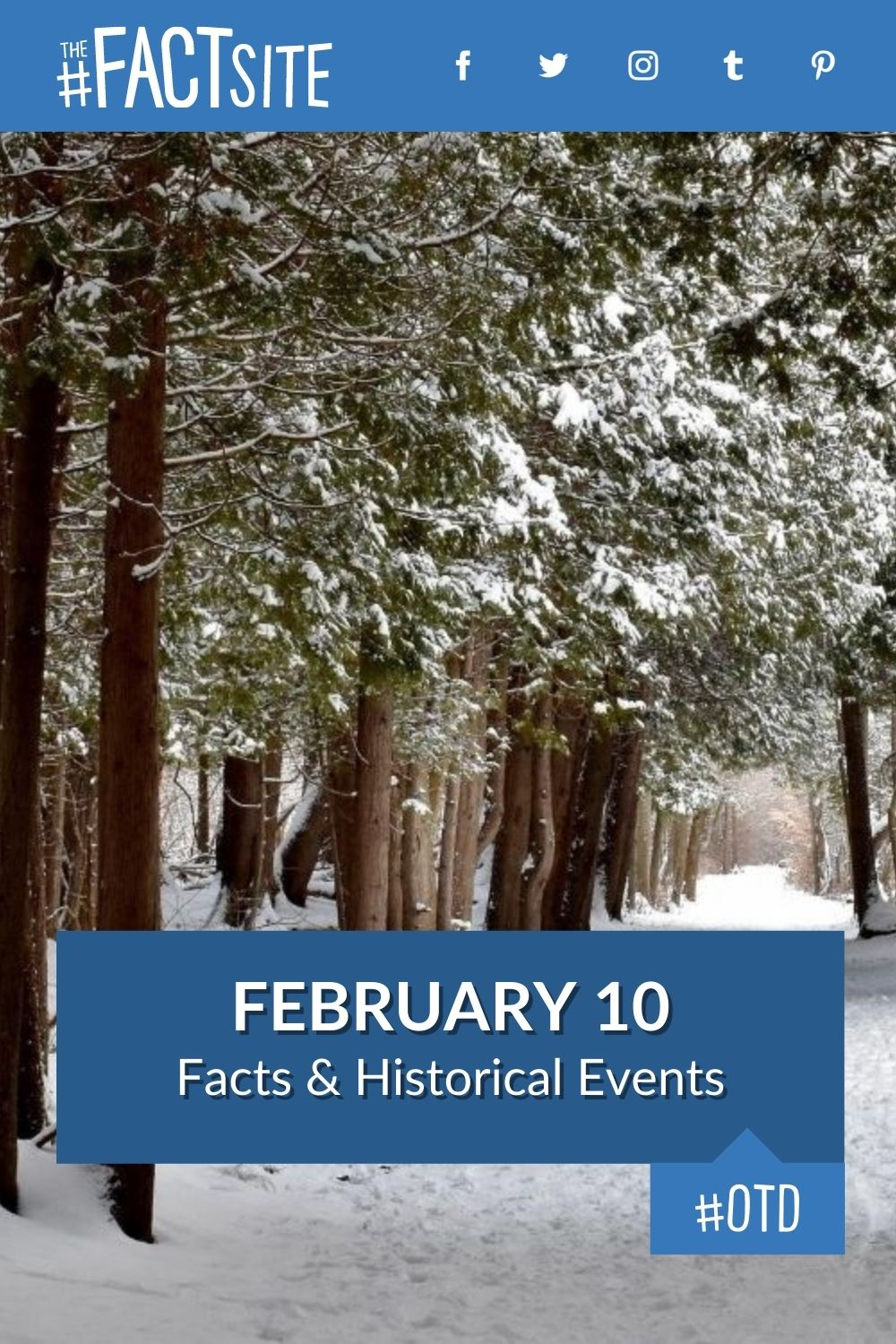 Facts & Historic Events That Happened on February 10