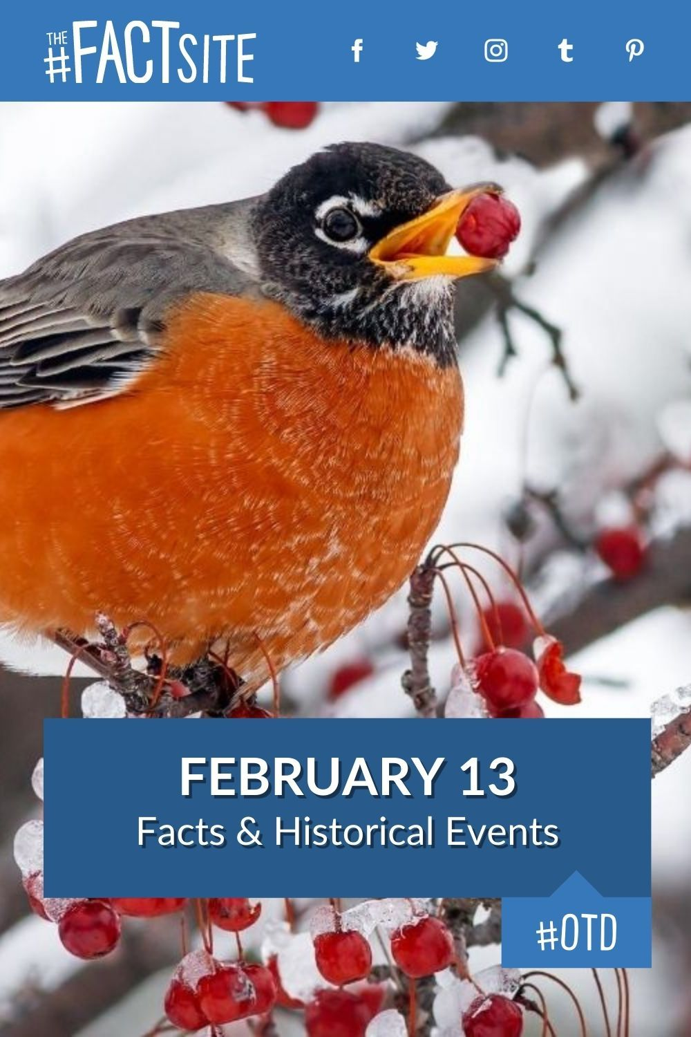 Facts & Historic Events That Happened on February 13