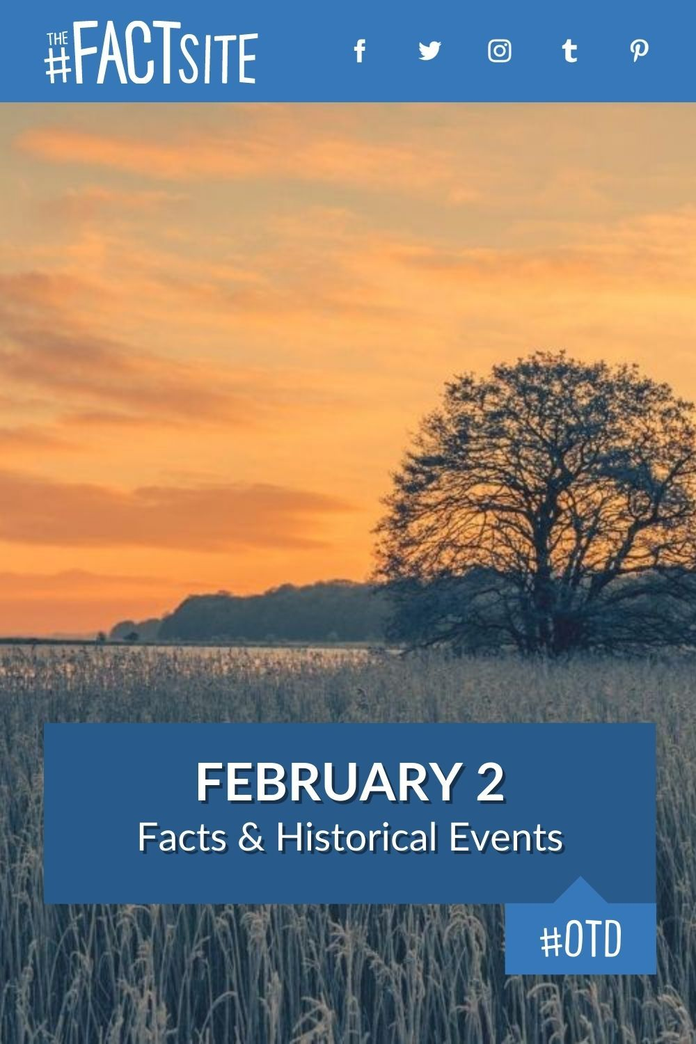 Facts & Historic Events That Happened on February 2