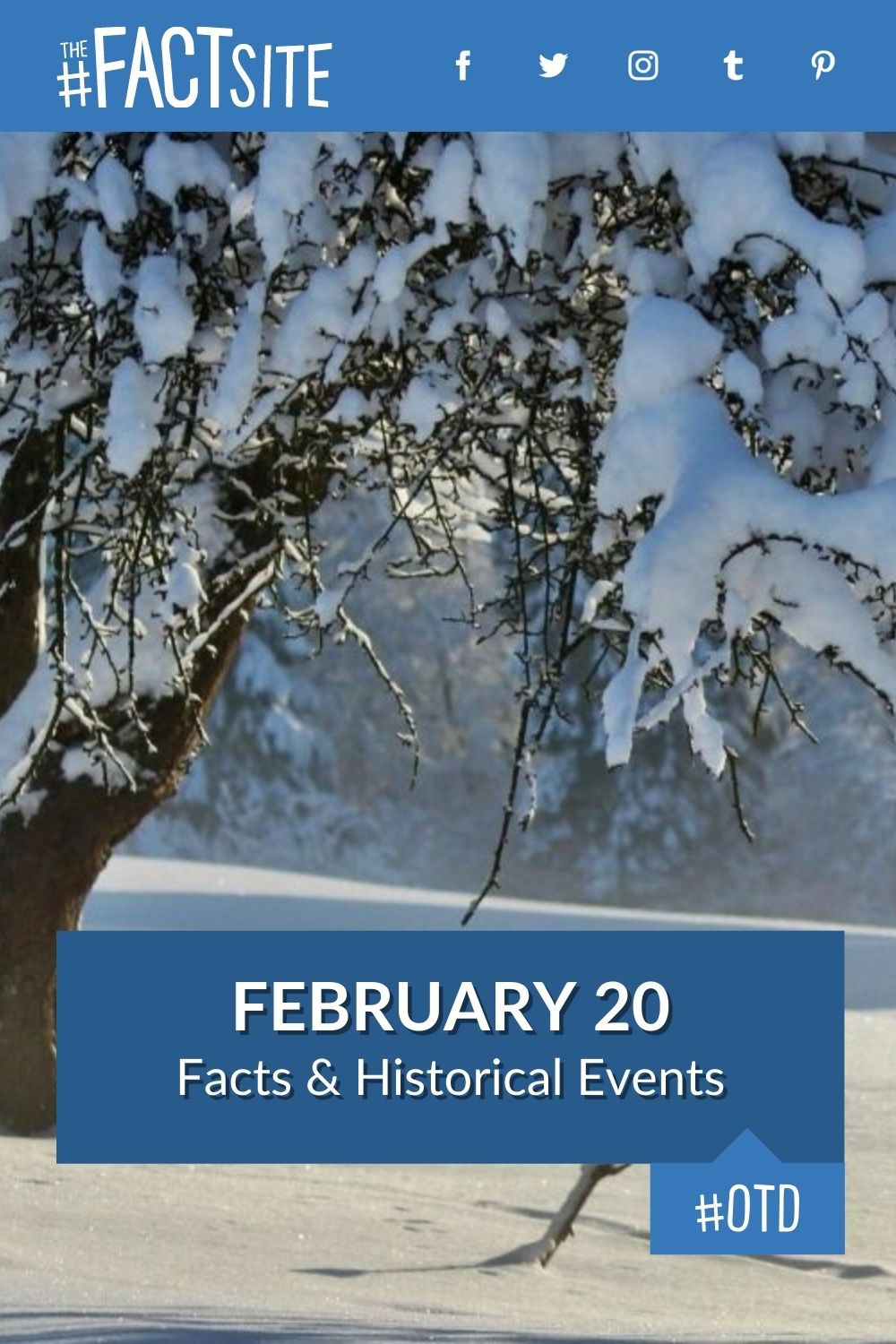 Facts & Historic Events That Happened on February 20