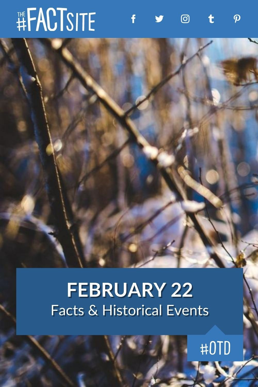 Facts & Historic Events That Happened on February 22