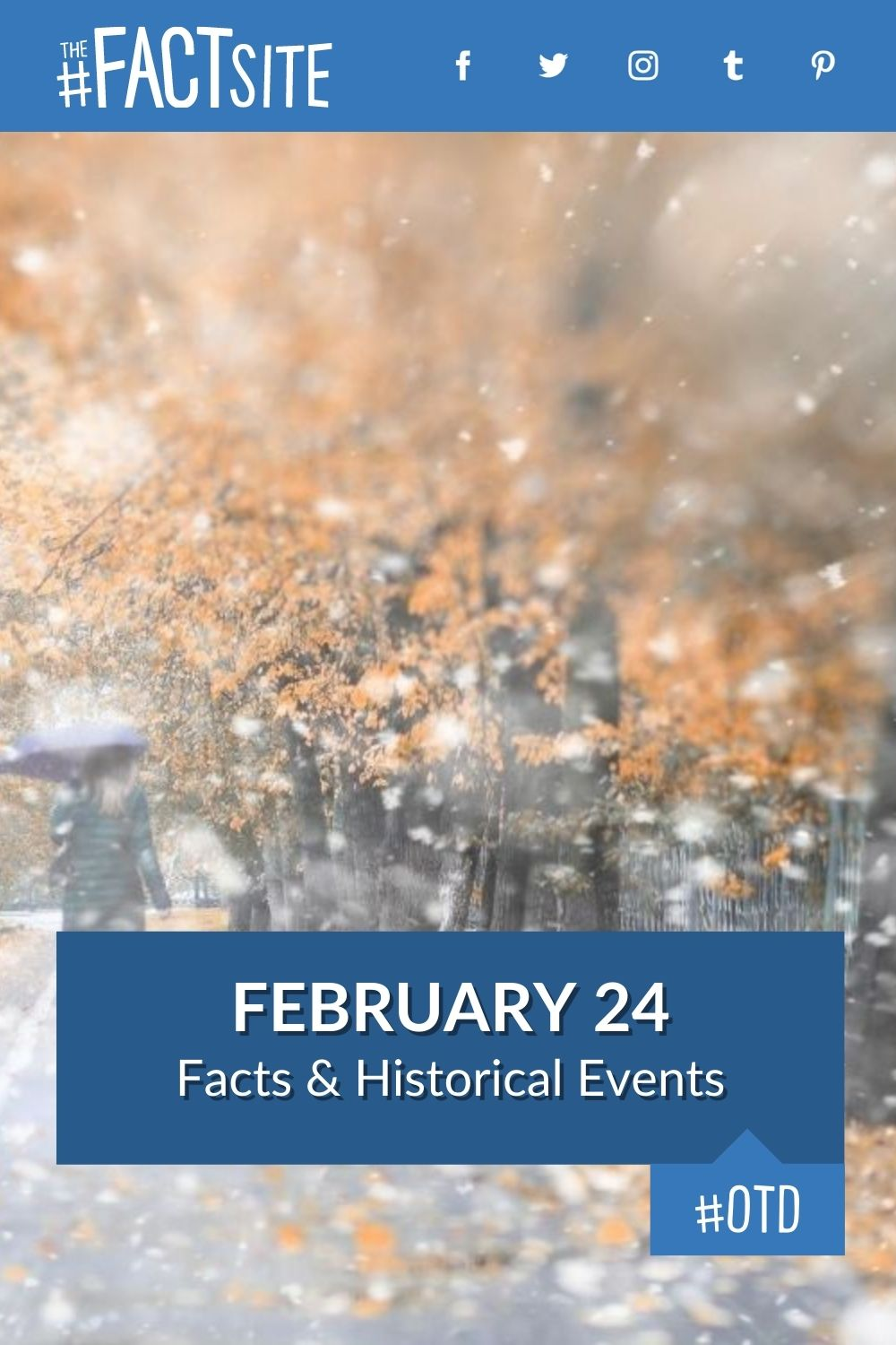 Facts & Historic Events That Happened on February 24
