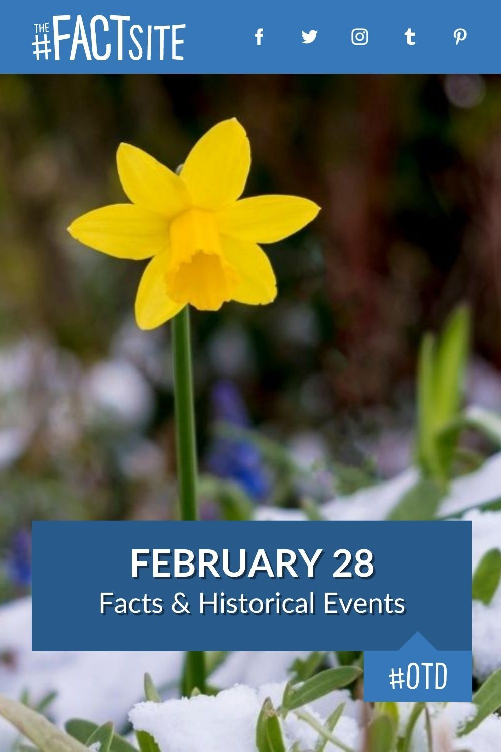 Facts & Historic Events That Happened on February 28