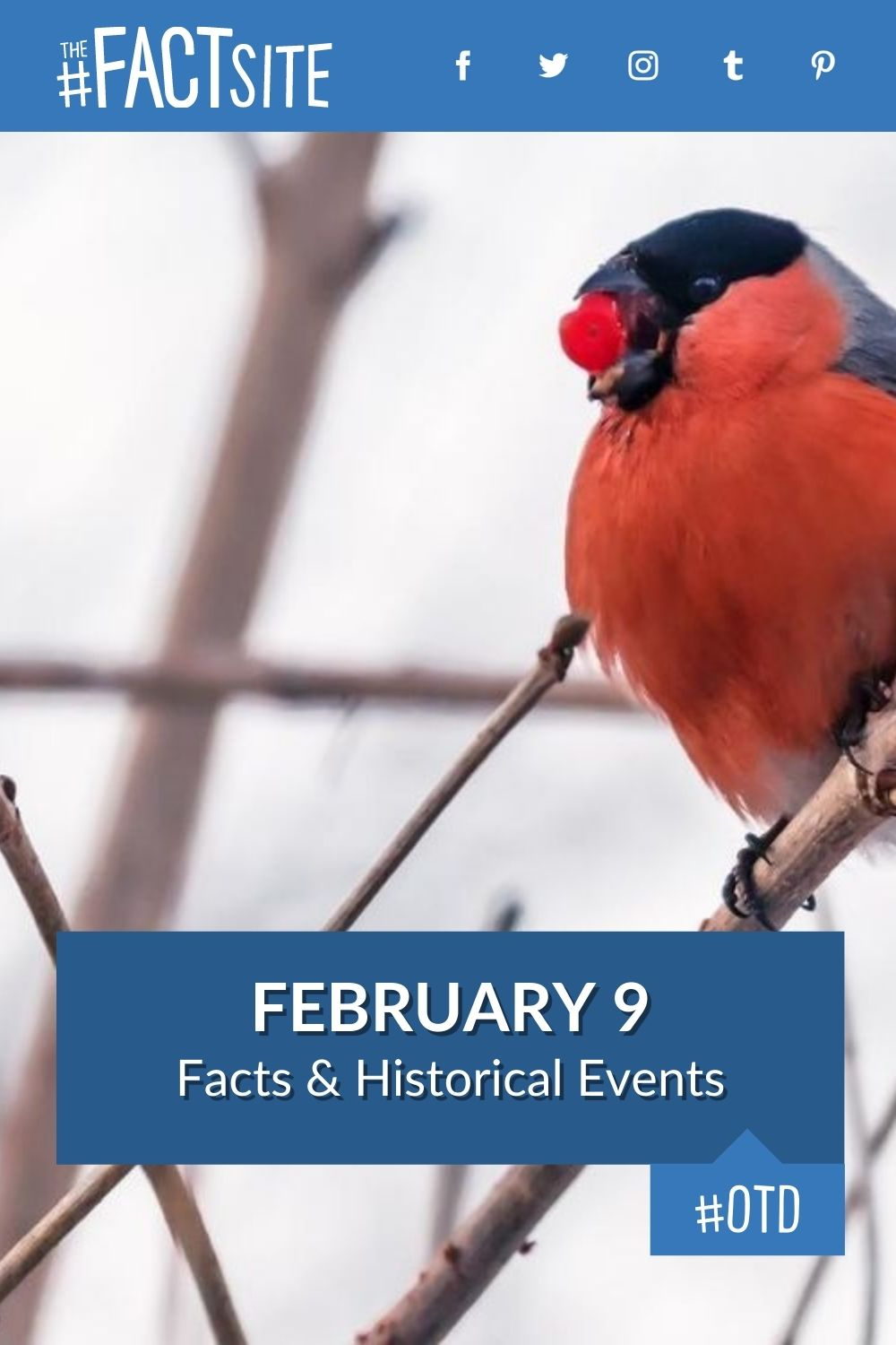 Facts & Historic Events That Happened on February 9