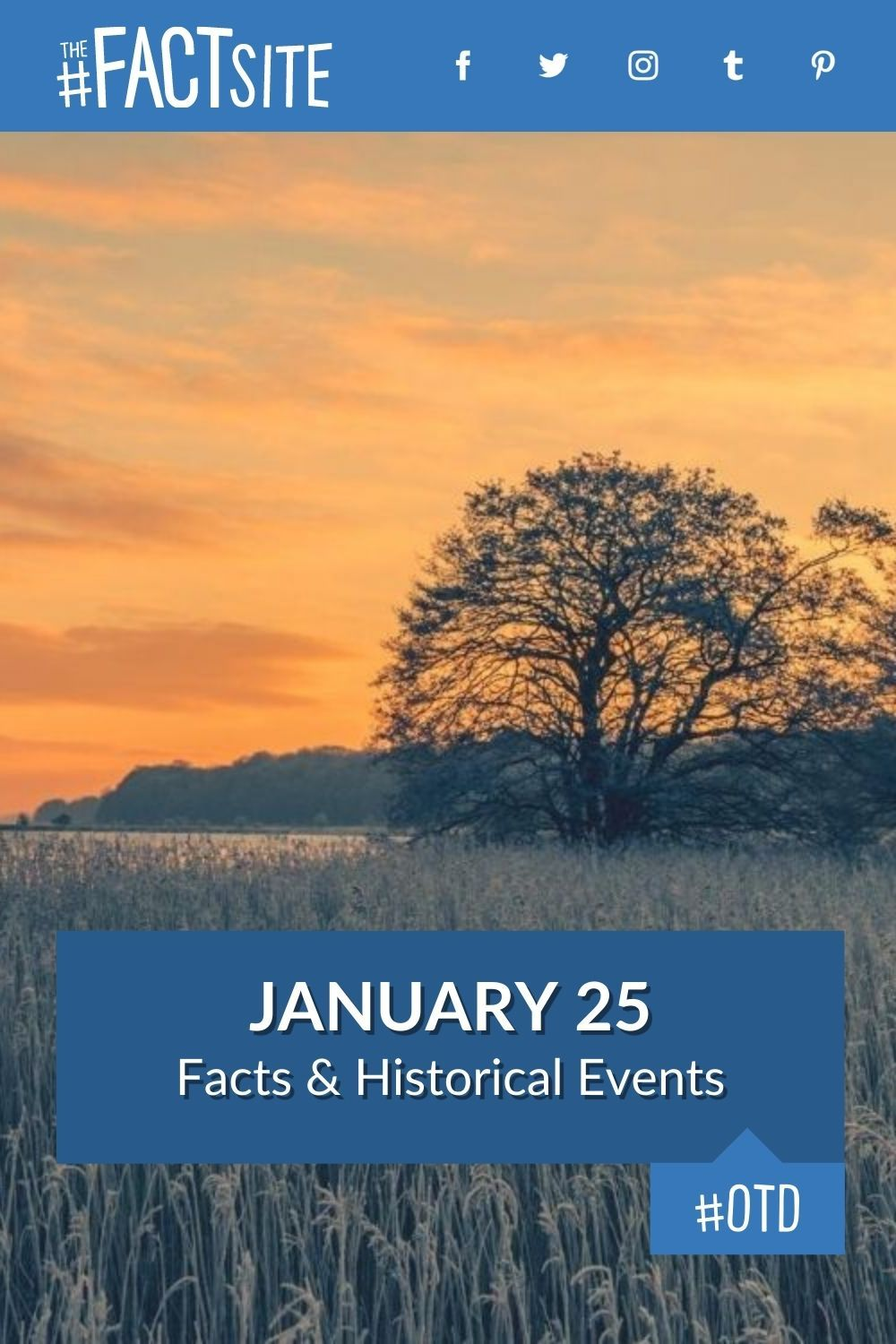 Facts & Historic Events That Happened on January 25