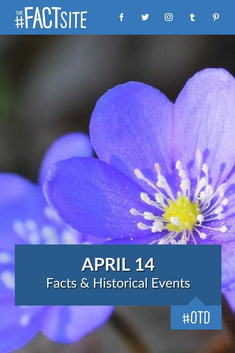Facts & Historic Events That Happened on April 14