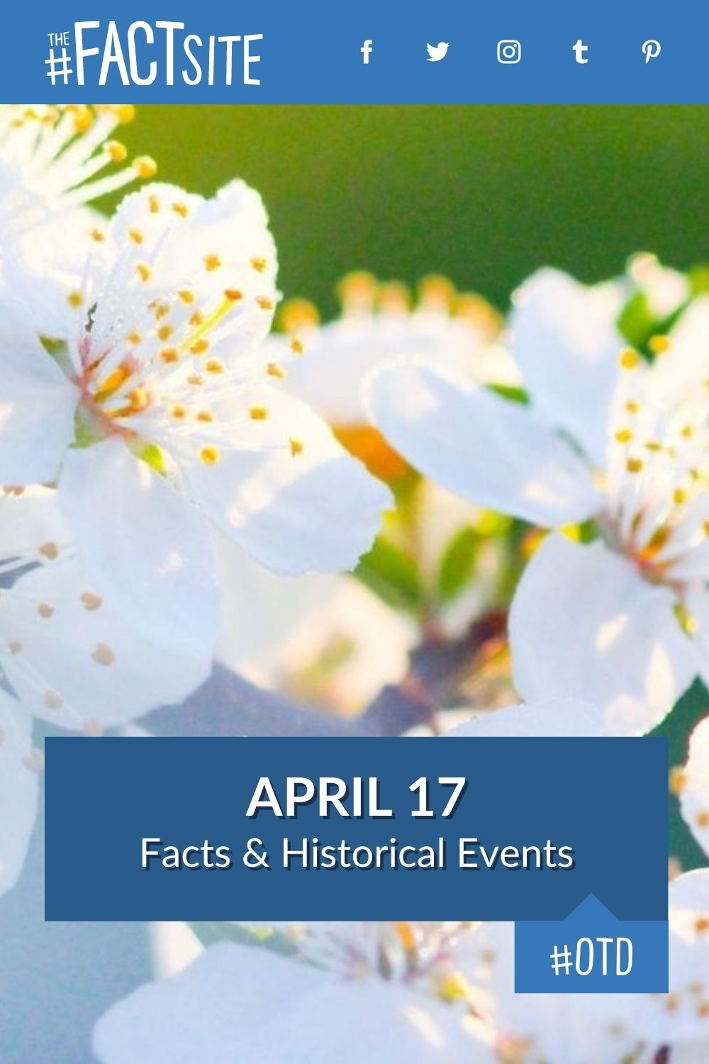 Facts & Historic Events That Happened on April 17