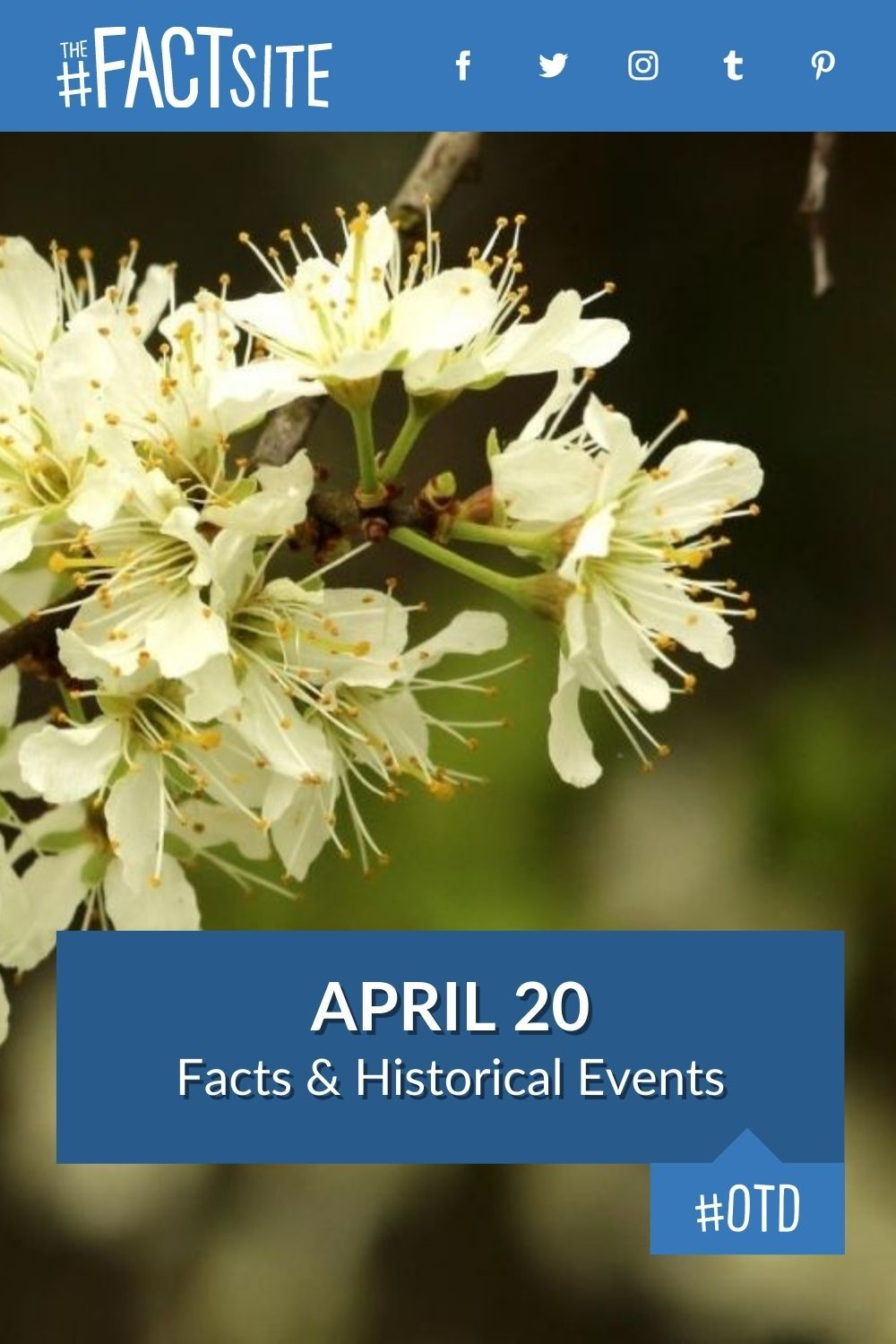 Facts & Historic Events That Happened on April 20