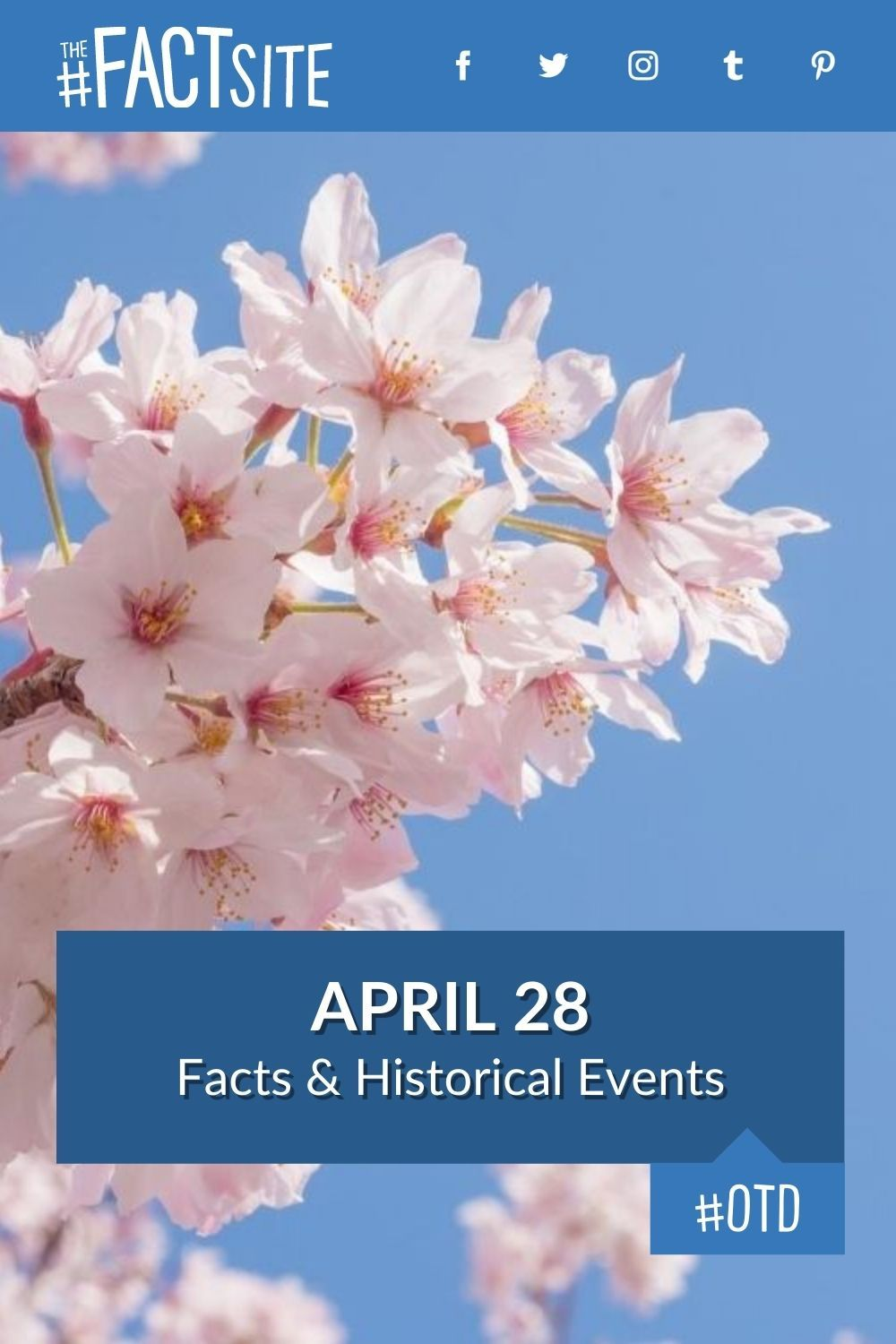 Facts & Historic Events That Happened on April 28