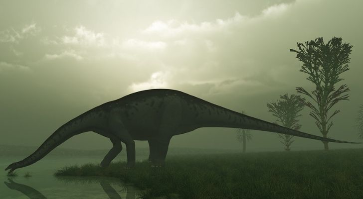 The Brontosaurus was not an Apatosaurus