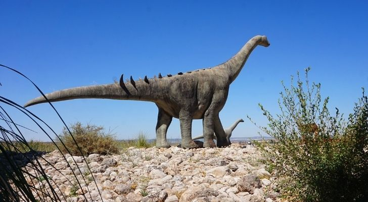 The Brontosaurus was a Sauropod