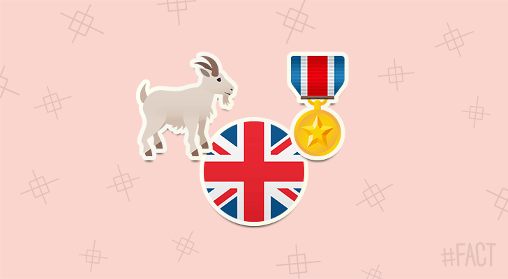 A goat called William Windsor served as a Lance Corporal in the British Army.