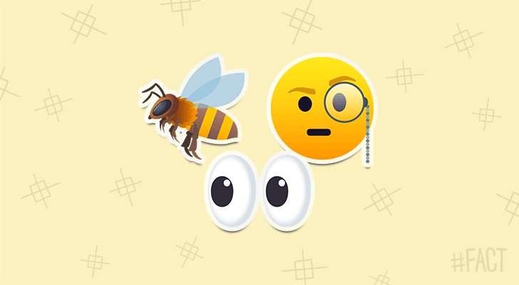 Honeybees can recognize human faces.