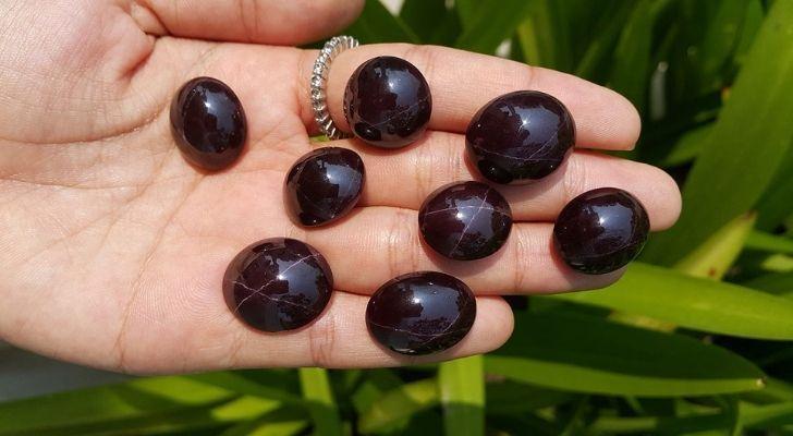 Eight beautifully polished star garnet gems