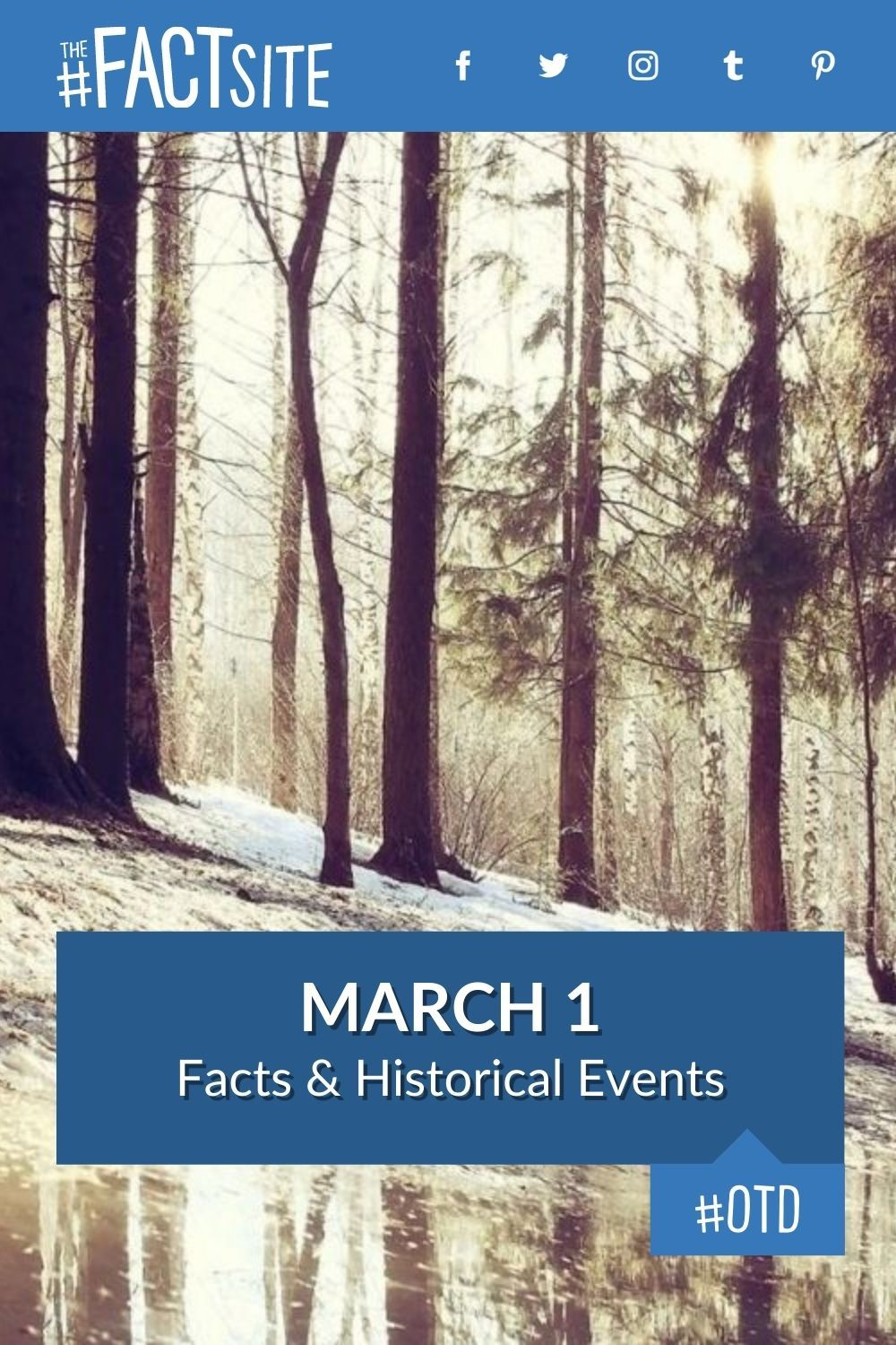 Facts & Historic Events That Happened on March 1