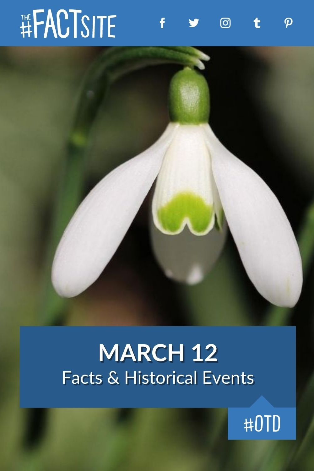 Facts & Historic Events That Happened on March 12