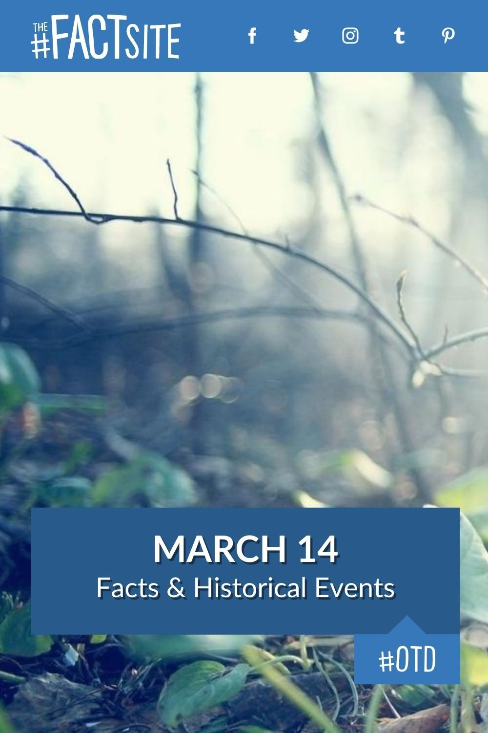 Facts & Historic Events That Happened on March 14