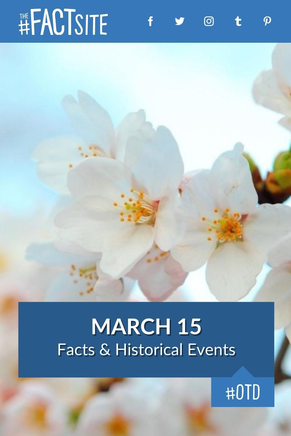 Facts & Historic Events That Happened on March 15