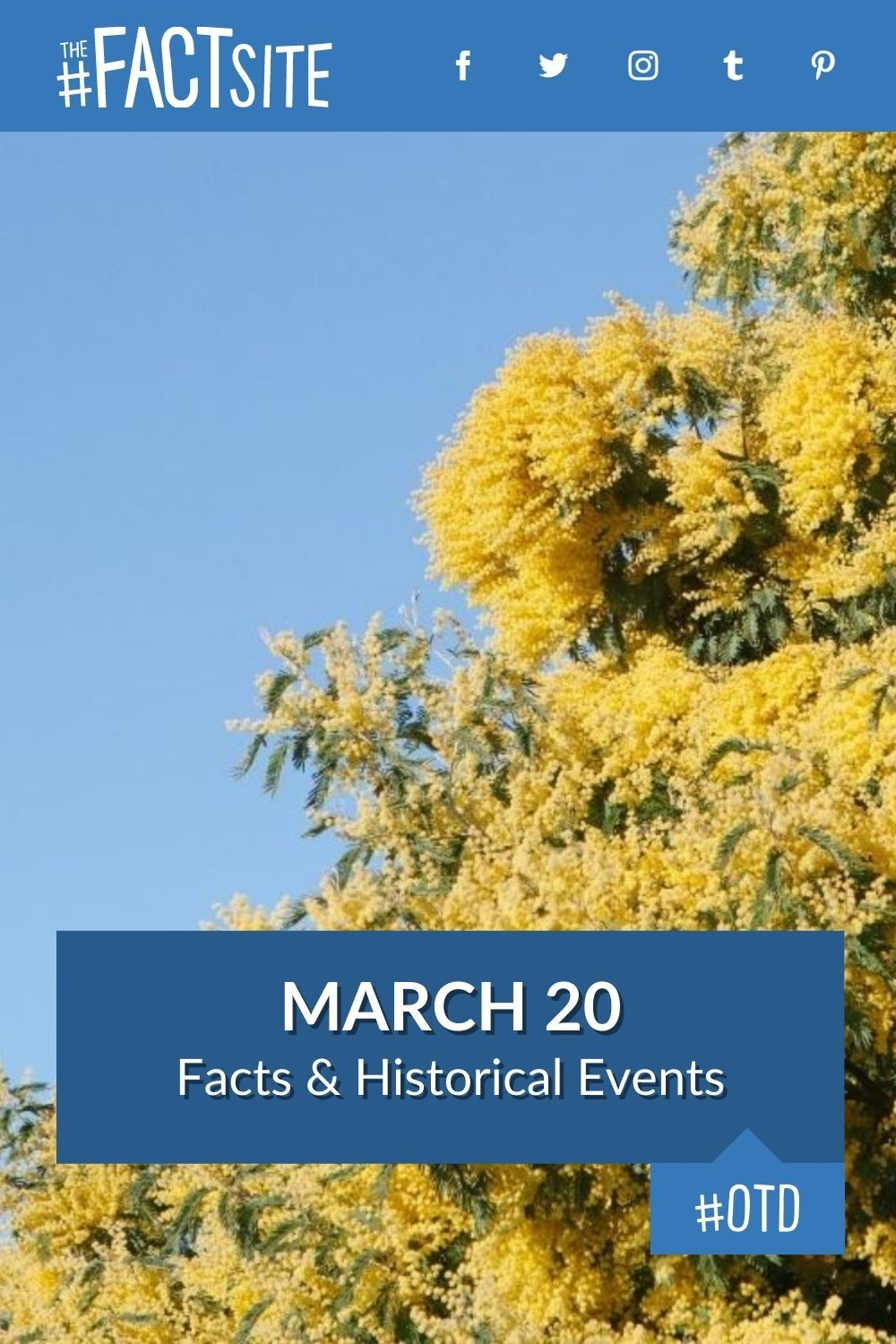 Facts & Historic Events That Happened on March 20