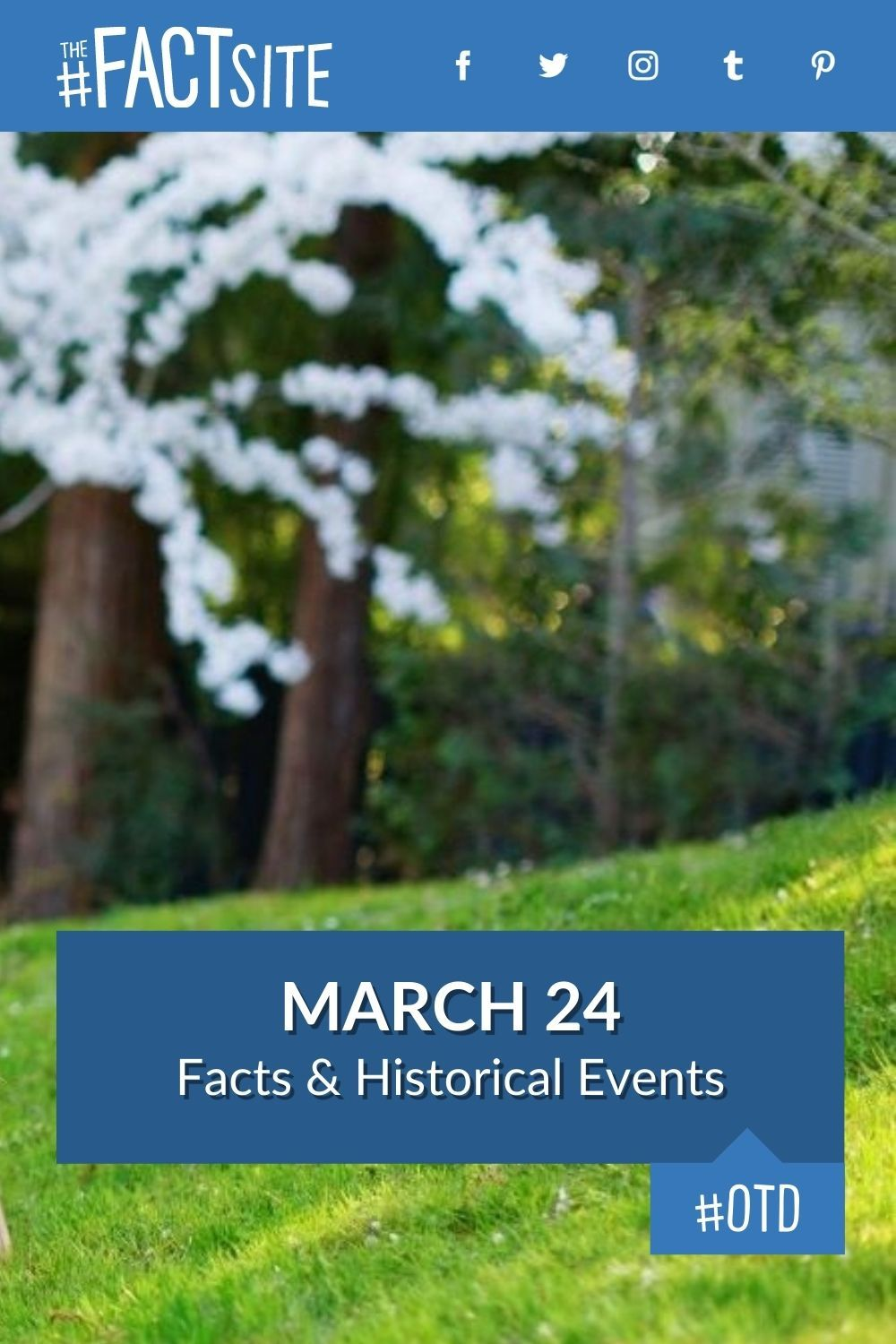 Facts & Historic Events That Happened on March 24