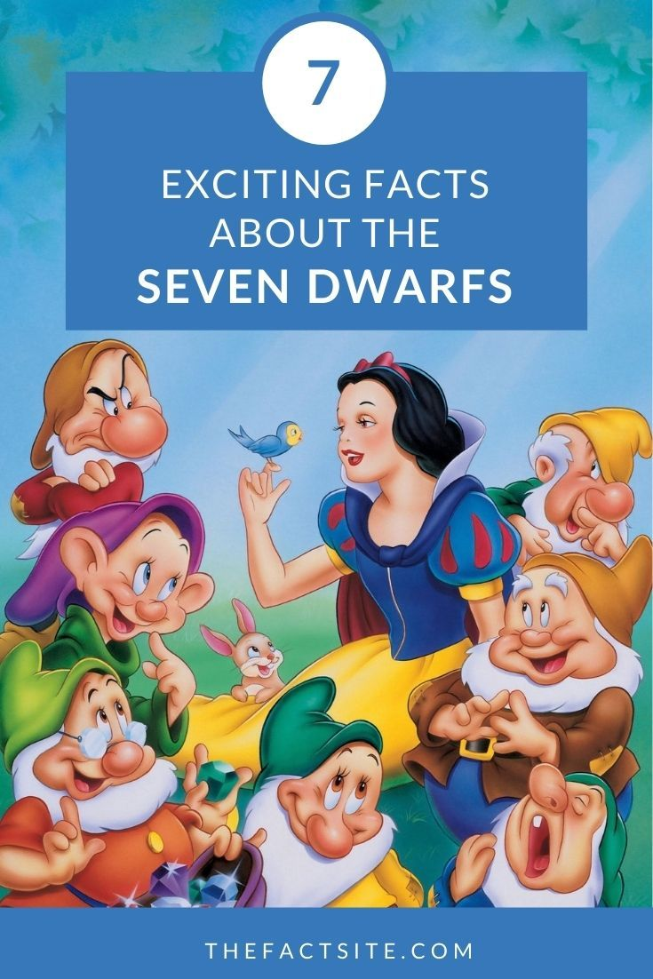 7 Exciting Facts About The Seven Dwarfs