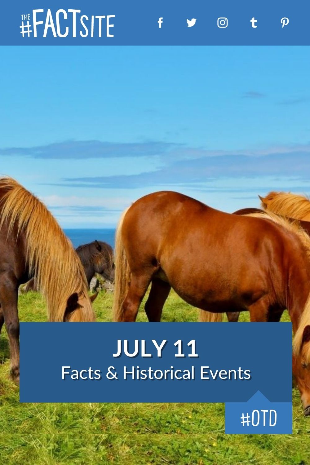 Facts & Historic Events That Happened on July 11