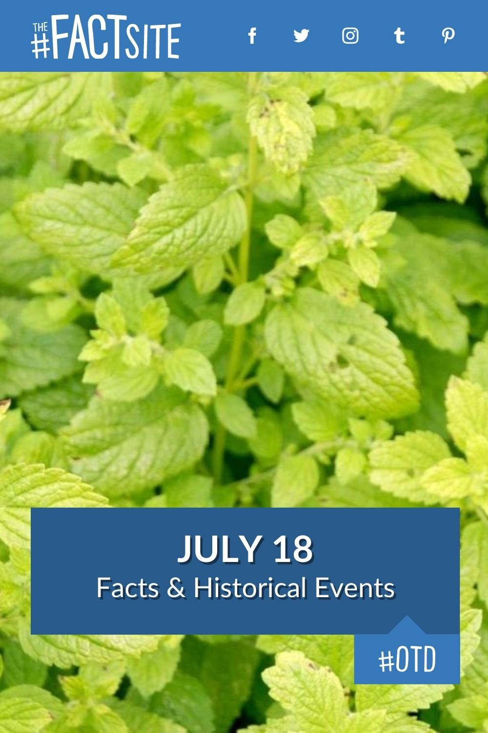 Facts & Historic Events That Happened on July 18