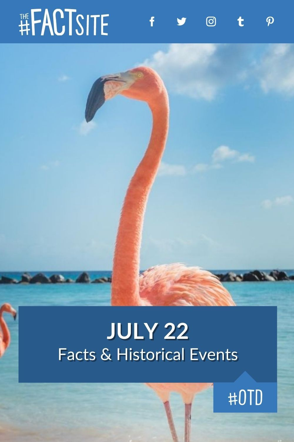 Facts & Historic Events That Happened on July 22